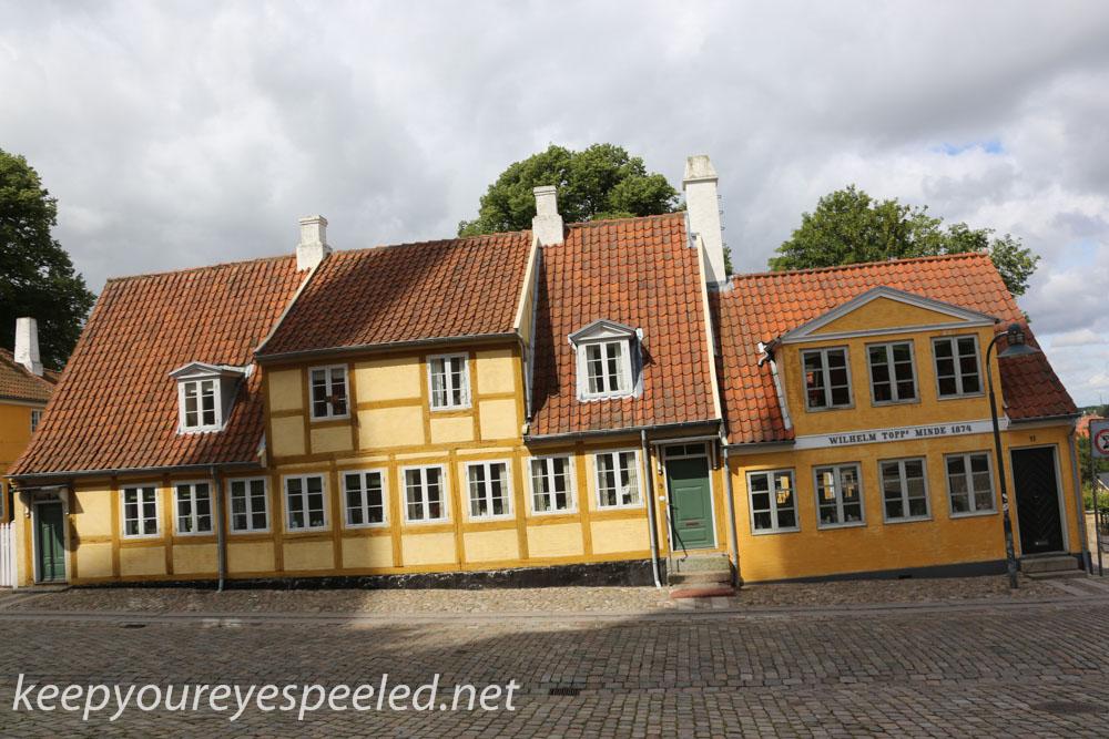 Roskilde  Denmark  July 30 2015 (19 of 33).jpg