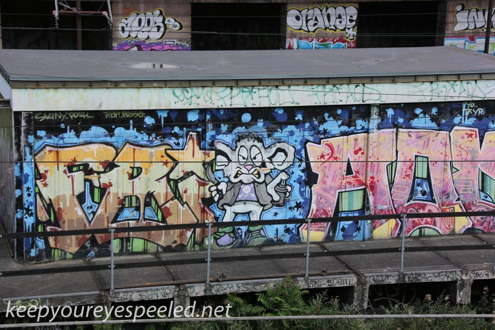 Roskilde  Denmark  July 30 2015 (2 of 33).jpg