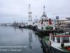 Capetown waterfront WALK -12