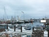 Capetown waterfront WALK -7