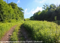 Pinchot-State-Forest-hike-1-of-44