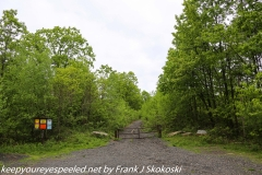 State Gamelands 119 hike May 25 2019