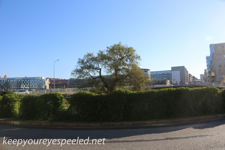 Stockholm Sweden morning walk  (38 of 39)