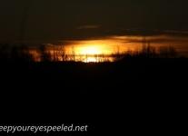 sunset (8 of 21)