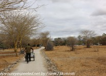 Tanzania-Day-Eight-ride-to-lodge-1-of-50
