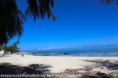 Tanzania Day Five Zanzibar Turtle Preserve October 2 2019
