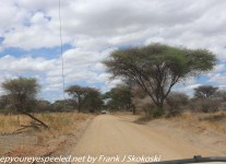 Tanzania-Day-Seven-Tarangire-1-of-16