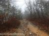 Tresckow hike  (17 of 50)