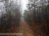 Tresckow hike  (19 of 50)