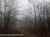 Tresckow hike  (20 of 50)