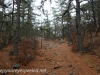 Tresckow hike  (6 of 50)