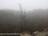 Tresckow hike  (7 of 50)