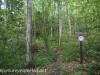 Tuscarora State Park  (1 of 43).jpg
