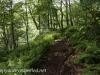 Tuscarora State Park  (10 of 43).jpg