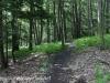 Tuscarora State Park  (11 of 43).jpg