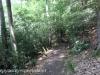 Tuscarora State Park  (3 of 43).jpg