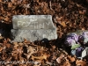 Upper lehigh Cemetery  (38 of 39)