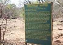 Zimbabwe elephant ride -1